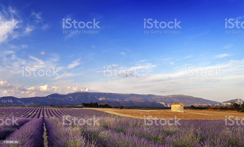 Landscape in Provence, France royalty-free stock photo