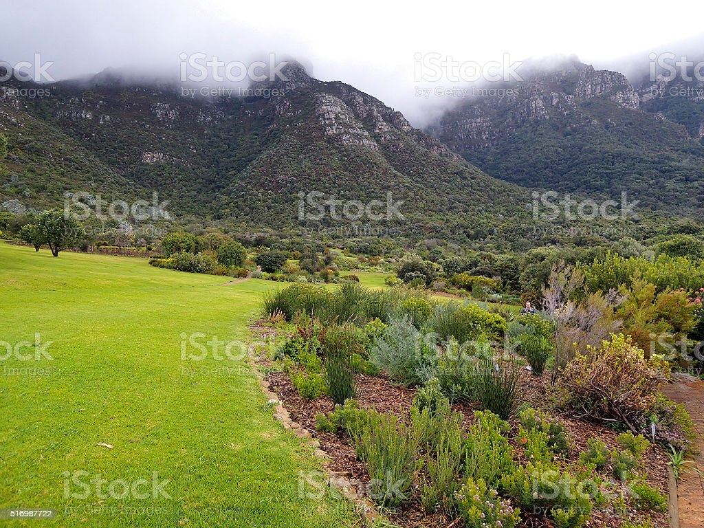 Landscape in Republic of South Africa - Kirstenbosh botanical ga stock photo
