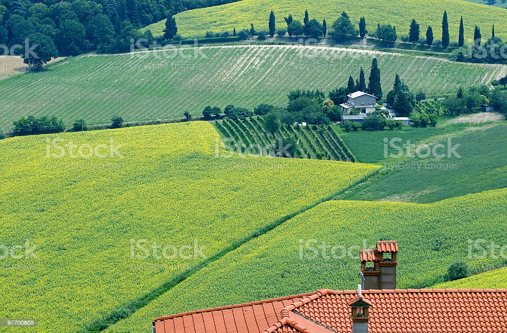 Landscape in Romagna at summer stock photo