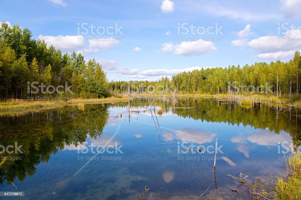 landscape in Russky Sever National Park, Vologda region, Russia stock photo