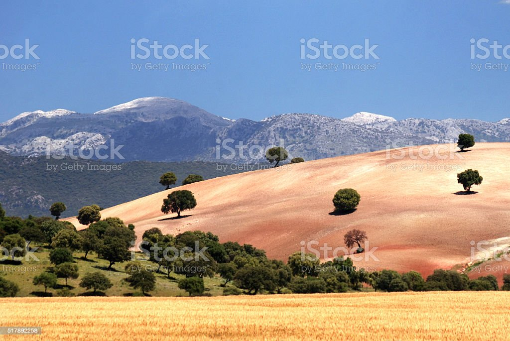 Landscape in southern Spain stock photo