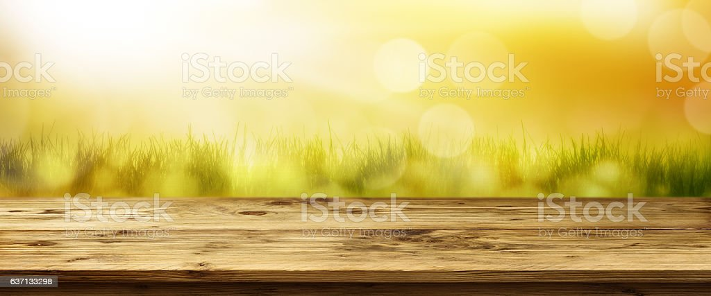 Landscape in spring stock photo