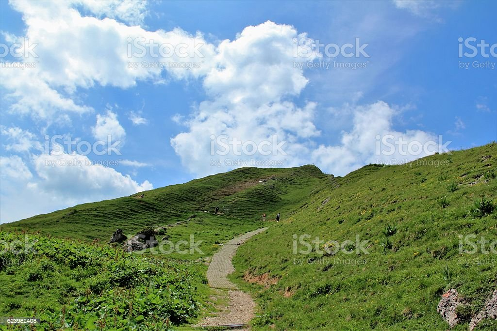 Landscape in the Allgau Alps, Germany stock photo