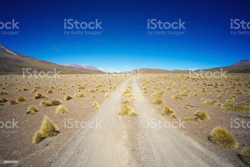 Landscape in the Altiplano stock photo