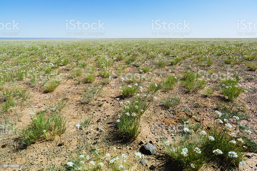 Landscape in the Gobi Desert stock photo