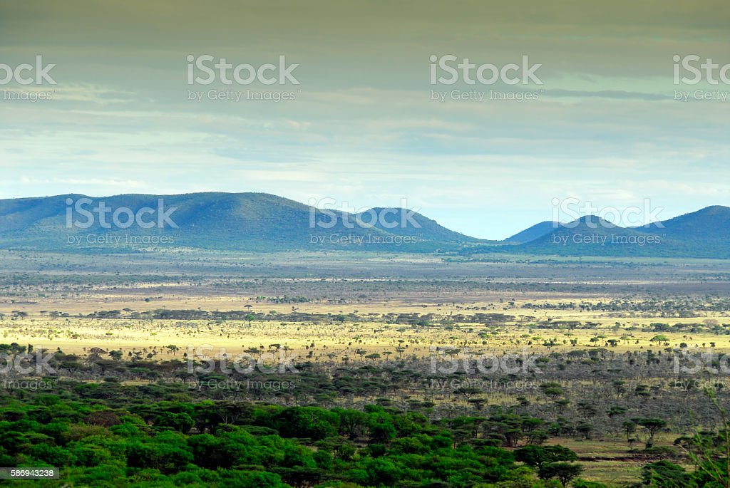 Landscape in the Ngorongoro Crater, Tanzania stock photo
