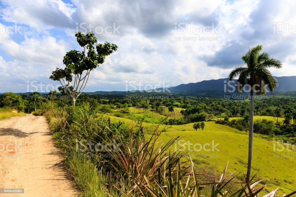 Landscape in the region Artemisa stock photo