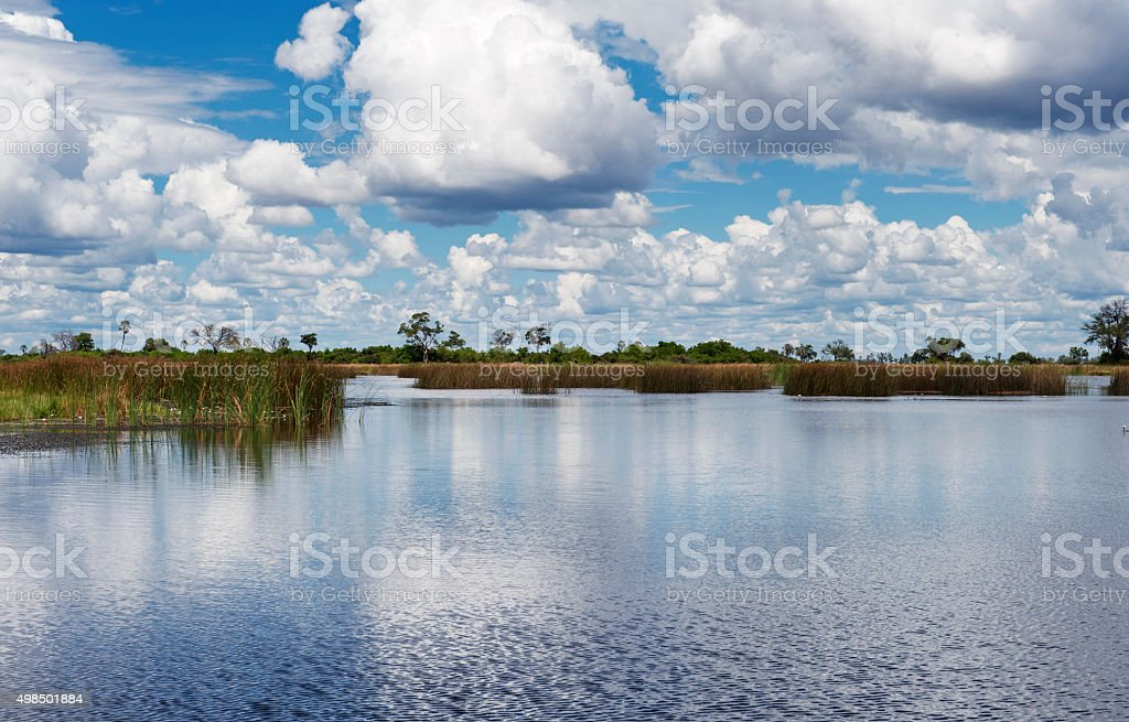 Landscape in the Selinda Spillway in the Selinda Concession,Botswana stock photo
