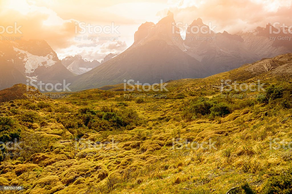 Landscape in Torres Del Paine National Park, Patagonia, Chile stock photo