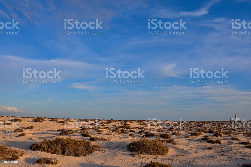 Landscape in Tropical Volcanic Canary Islands Spain stock photo