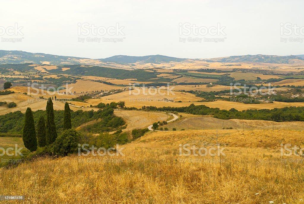 Landscape in Tuscany at summer near Sarteano (Siena) stock photo