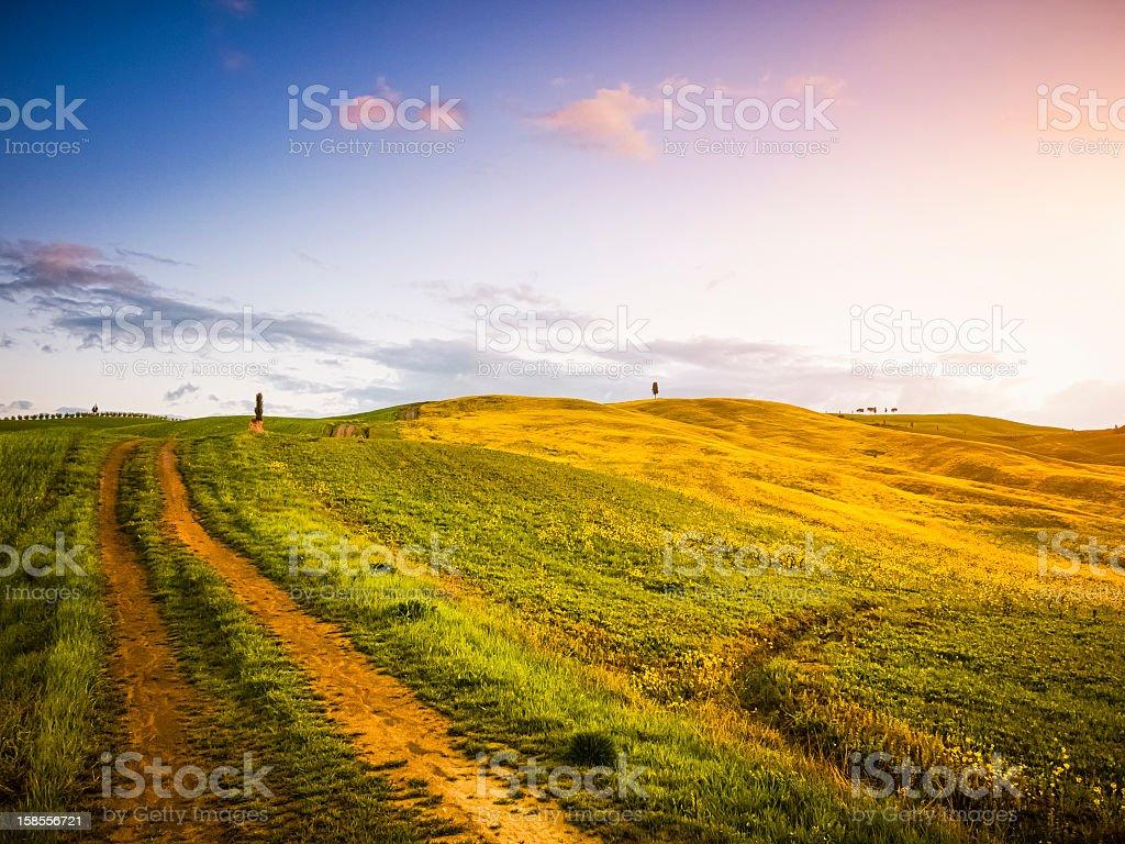 Landscape in Tuscany at sunrise royalty-free stock photo