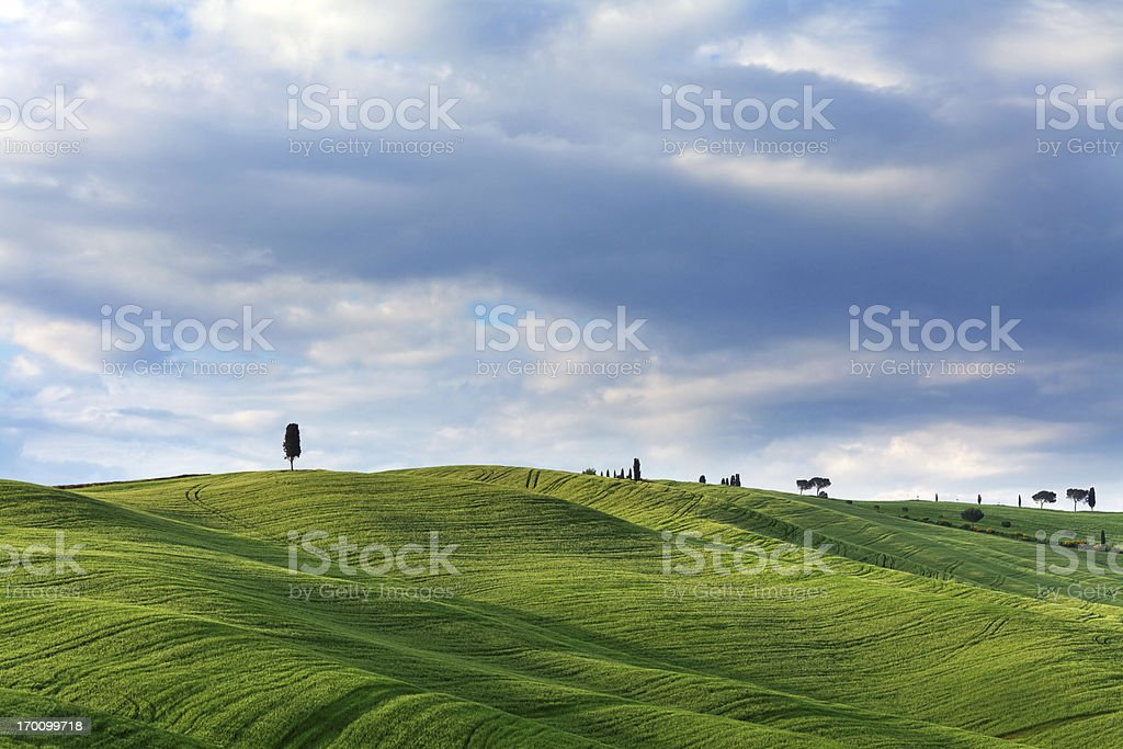 Landscape in Tuscany royalty-free stock photo