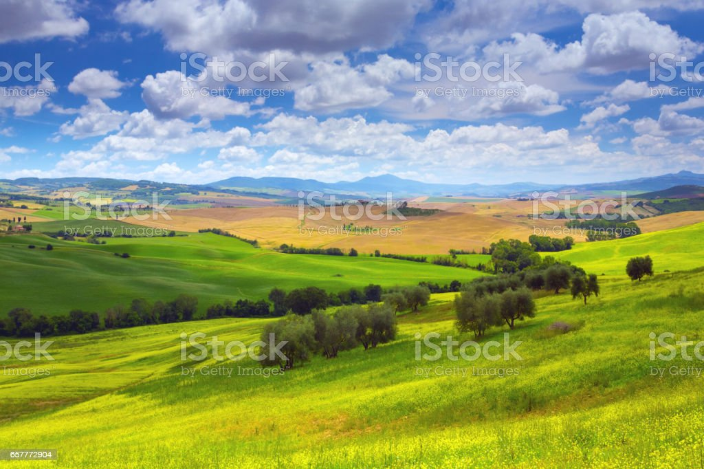 Landscape in Tuscany with rapeseed stock photo