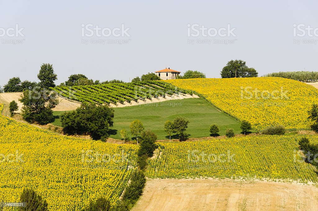 Landscape in Umbria near Todi stock photo