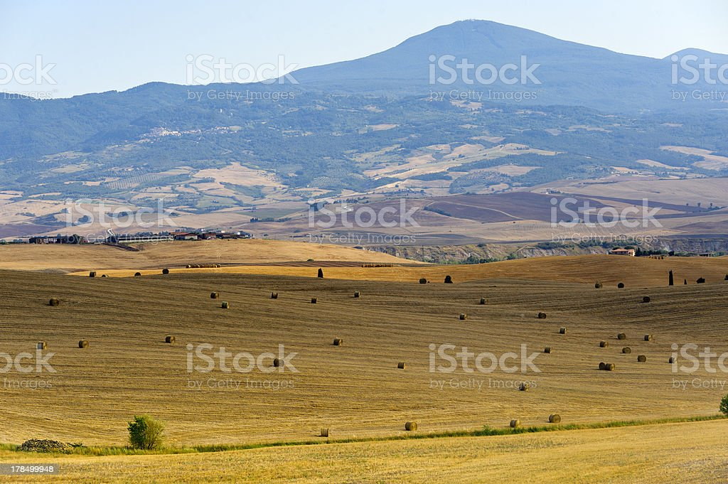 Landscape in Val d'Orcia (Tuscany) royalty-free stock photo