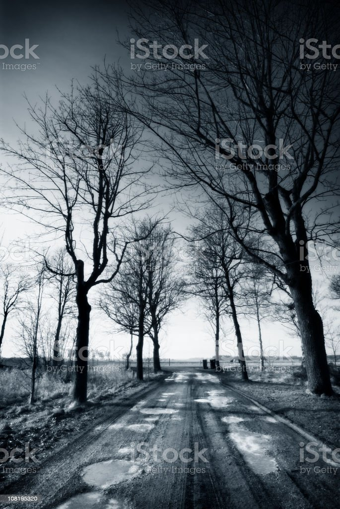 Landscape in Winter, Black and White royalty-free stock photo