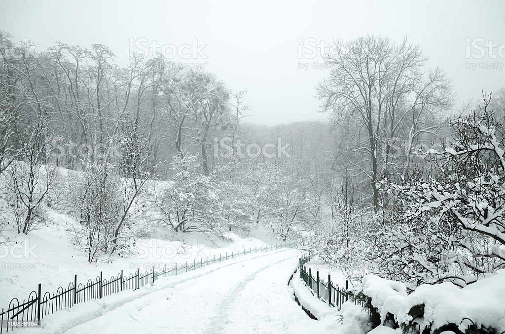 Landscape in winter city park royalty-free stock photo