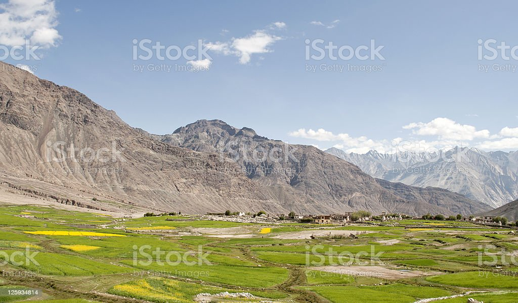 Landscape Leh Manali Road Ladakh India royalty-free stock photo