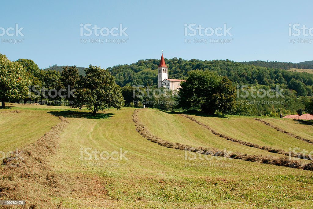 Landscape Near Ilirska Bistrica stock photo