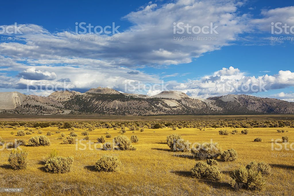 Landscape near Mono Lake stock photo