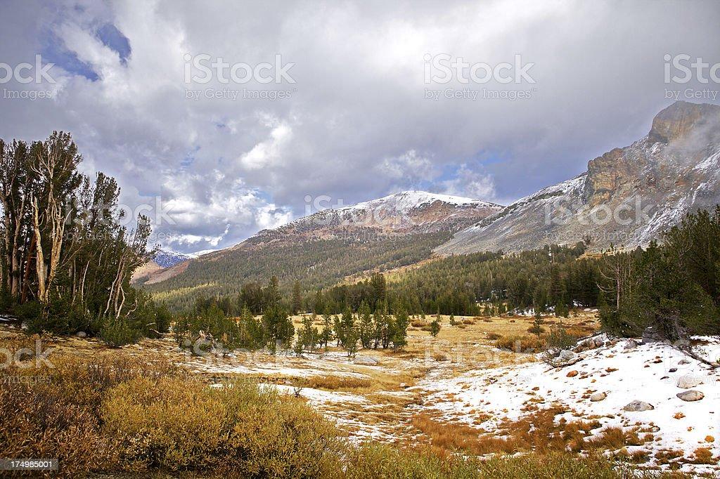 landscape near tioga pass road stock photo