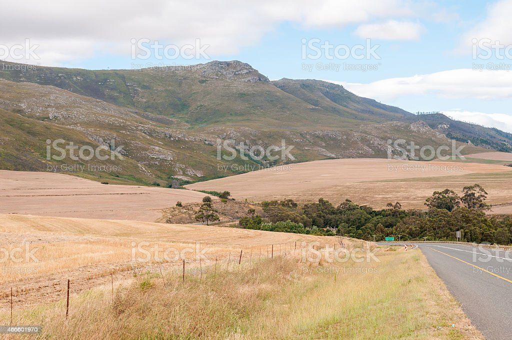 Landscape next to the N2 main road, South Africa stock photo