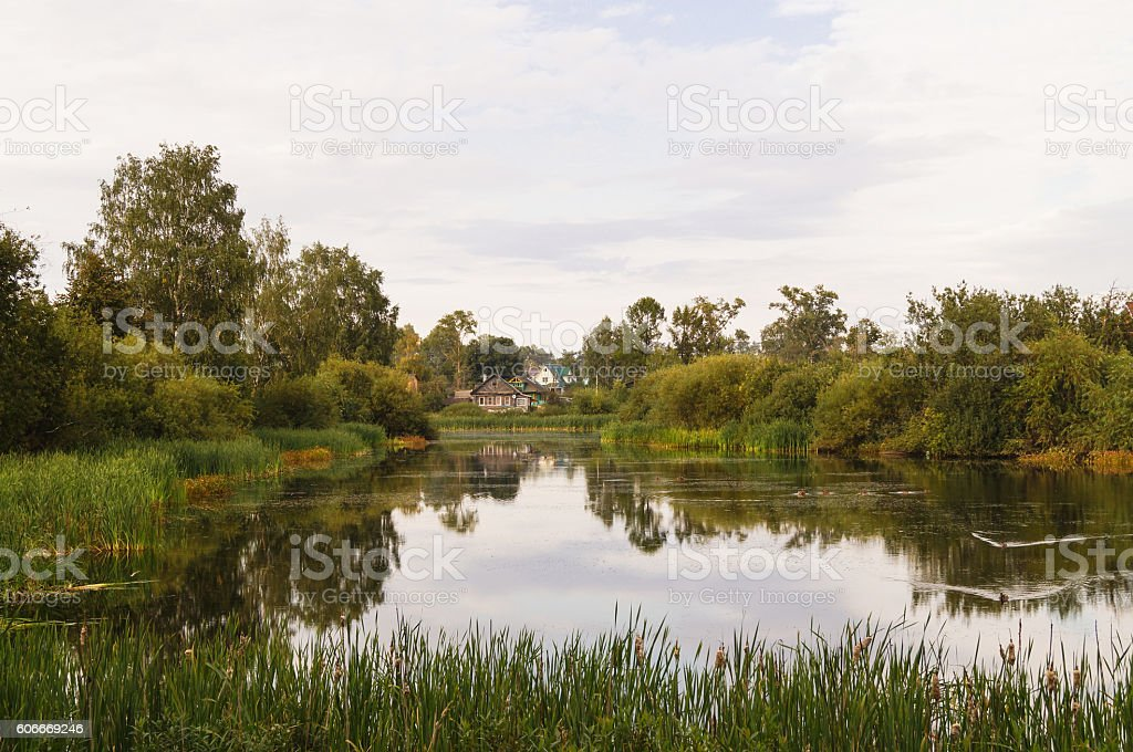 landscape of a calm pound with a green forest around autumn stock photo