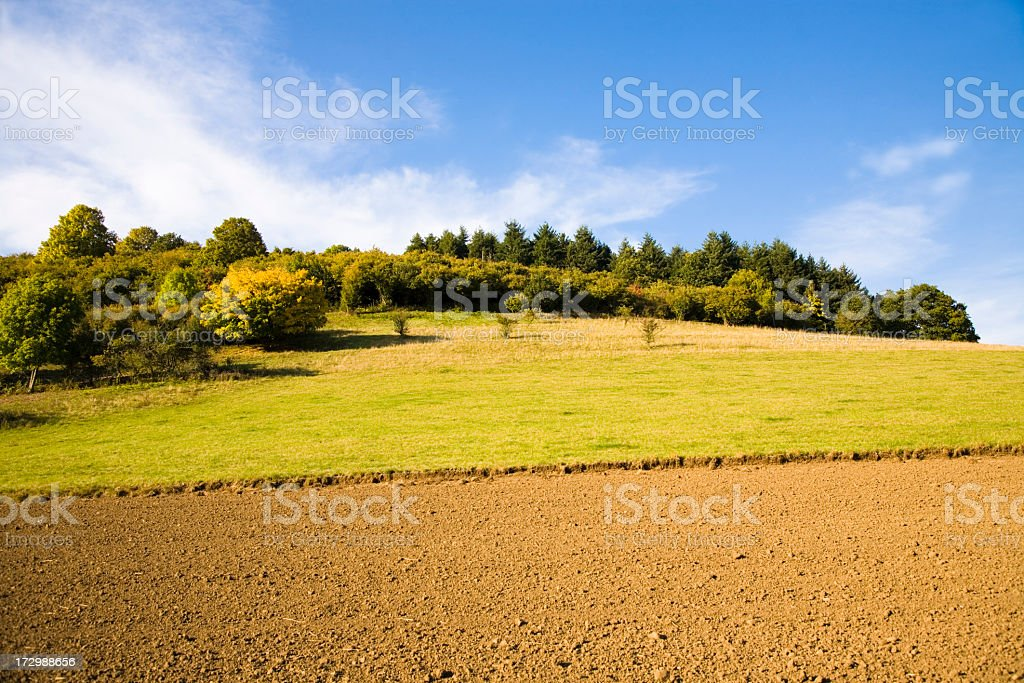 A landscape of a dirt road next to a field royalty-free stock photo