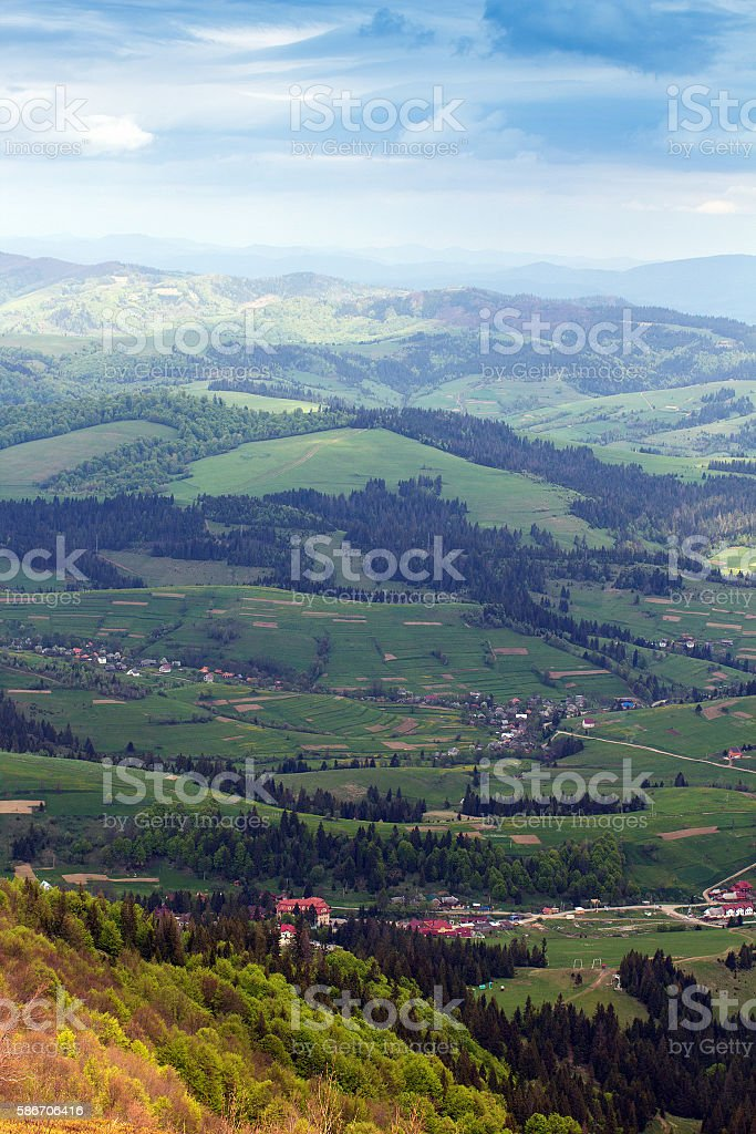 landscape of a mountains with fir-trees and green valley stock photo
