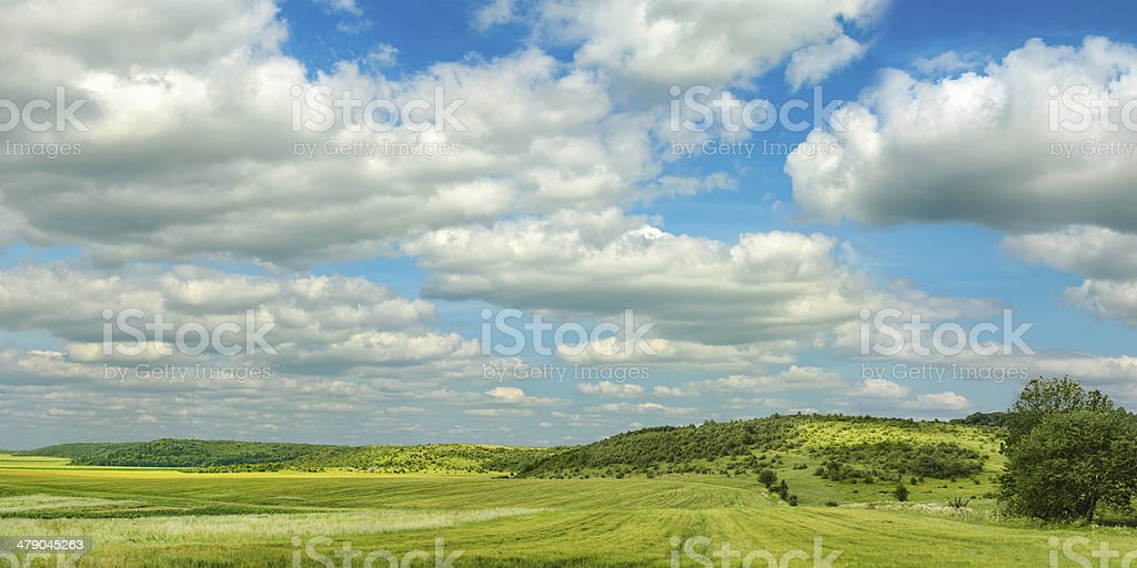Landscape of agricultural fields stock photo