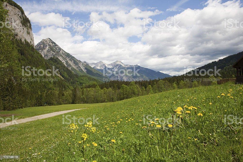 landscape of Ausrtia royalty-free stock photo