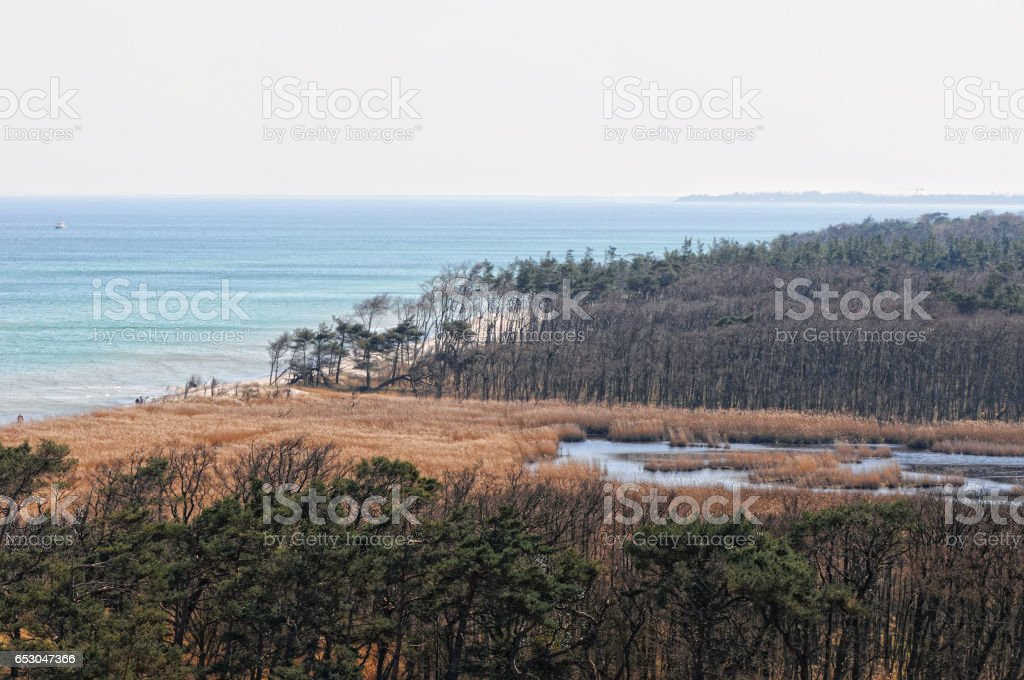 Landscape of Baltic Sea beach at Darsser Ort at (Darss peninsula in Mecklenburg-Vorpommern, Germany). stock photo