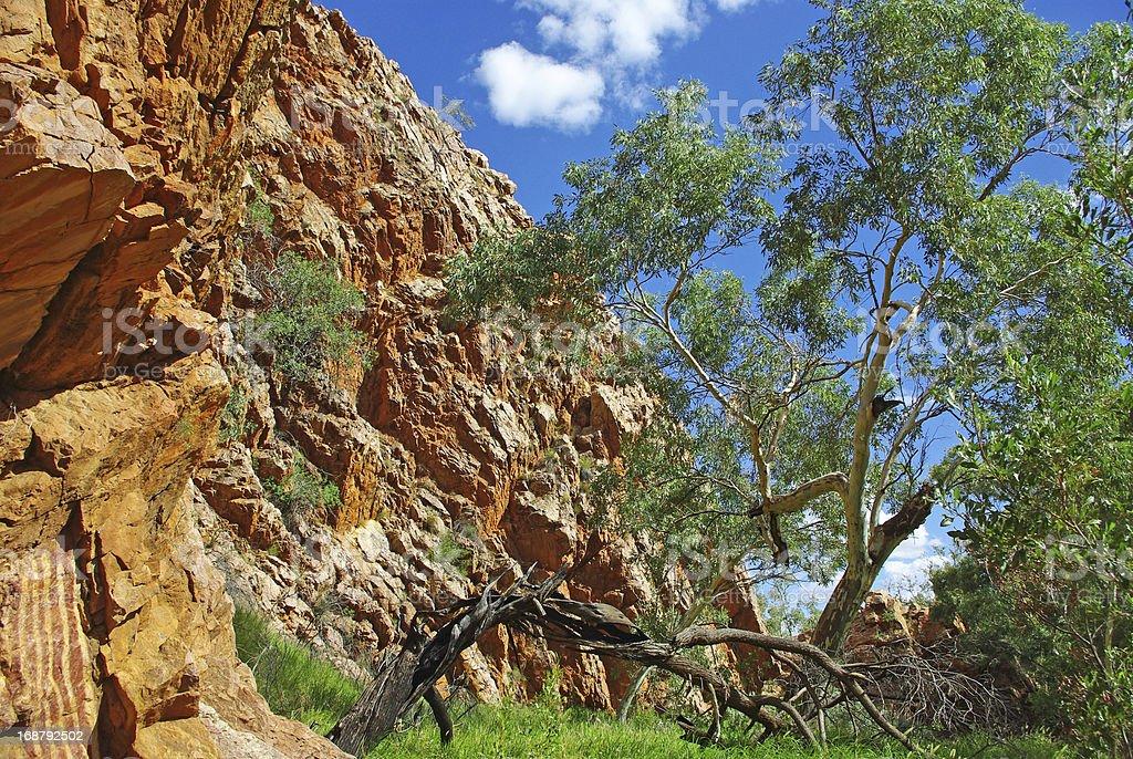 Landscape of Central Australia royalty-free stock photo