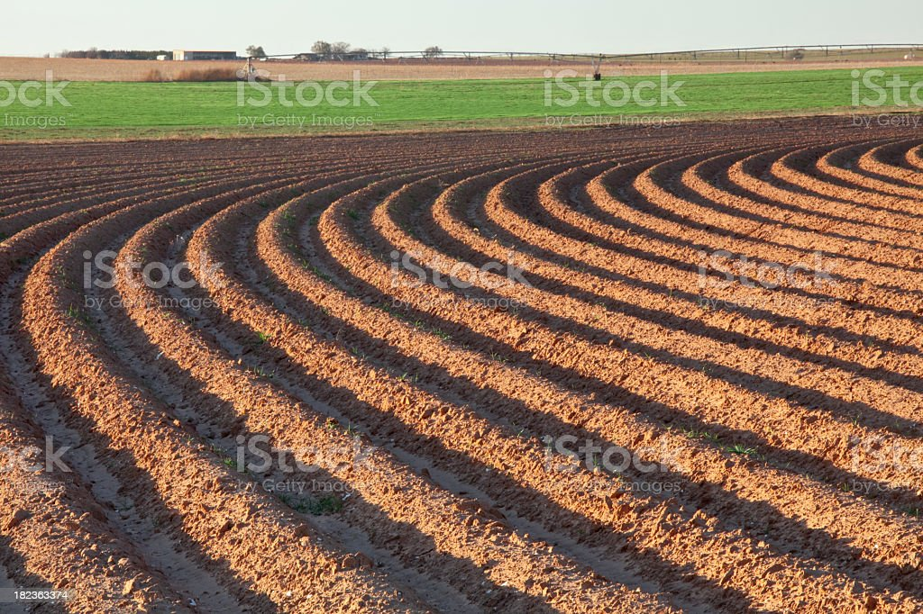 A landscape of converging curved furrows of plowed field stock photo