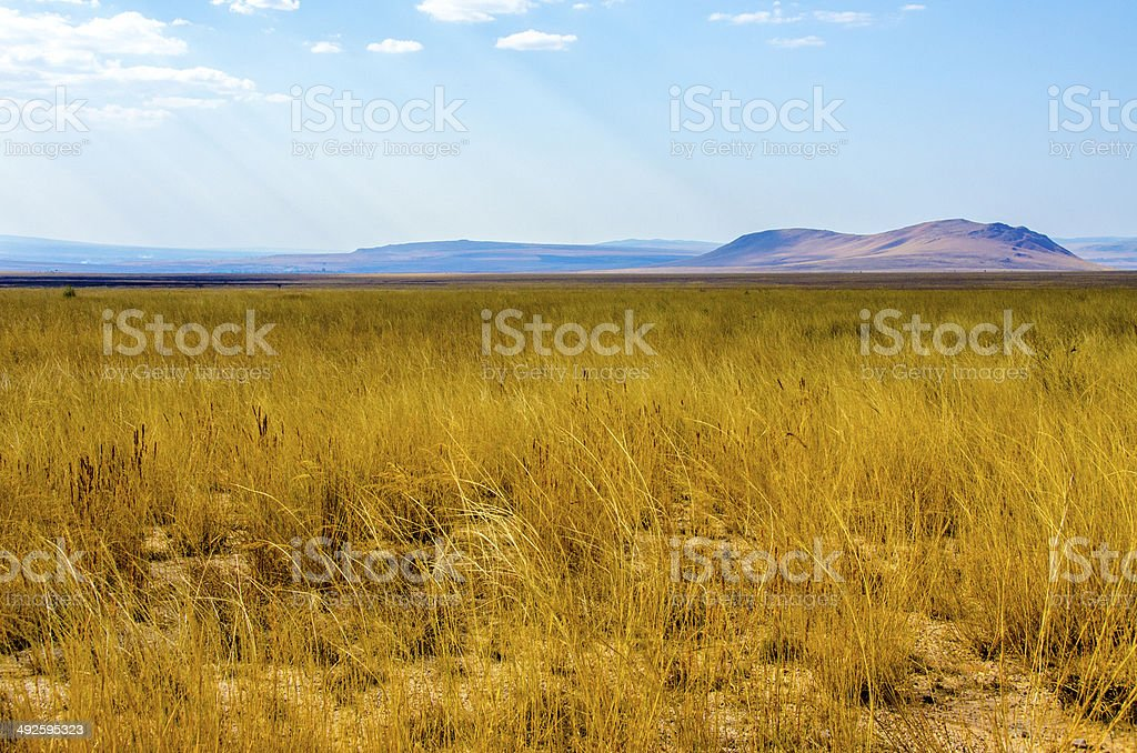 Landscape of desert in Madagascar stock photo