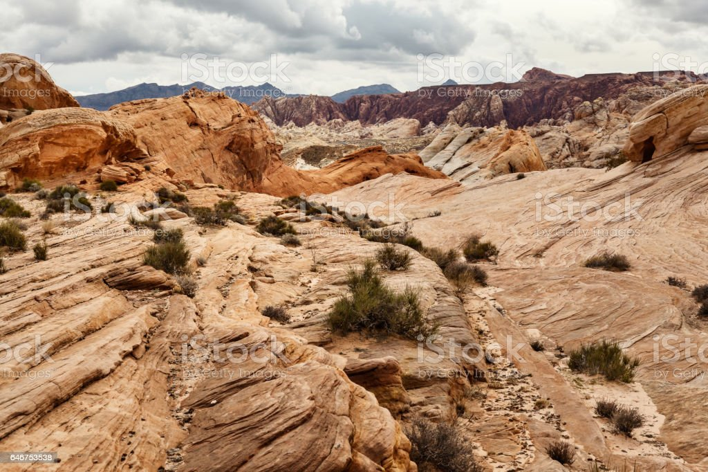 Landscape of desert in southern Nevada, USA stock photo