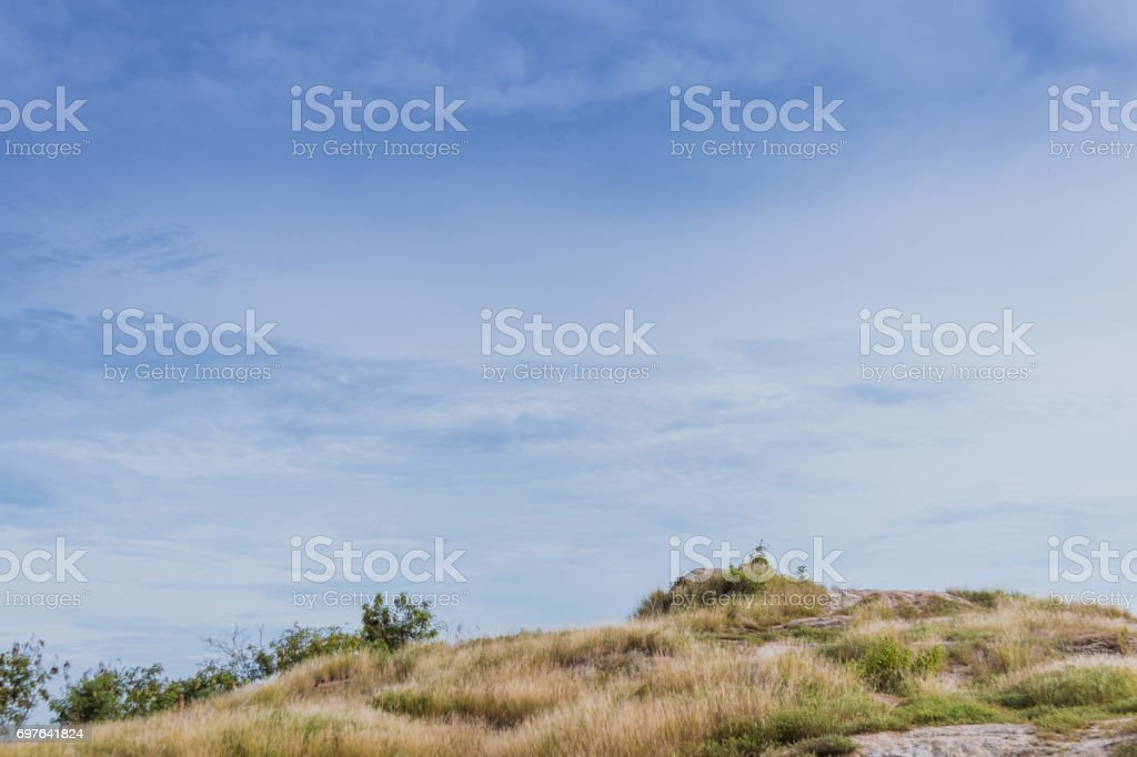 Landscape of field and sky. stock photo