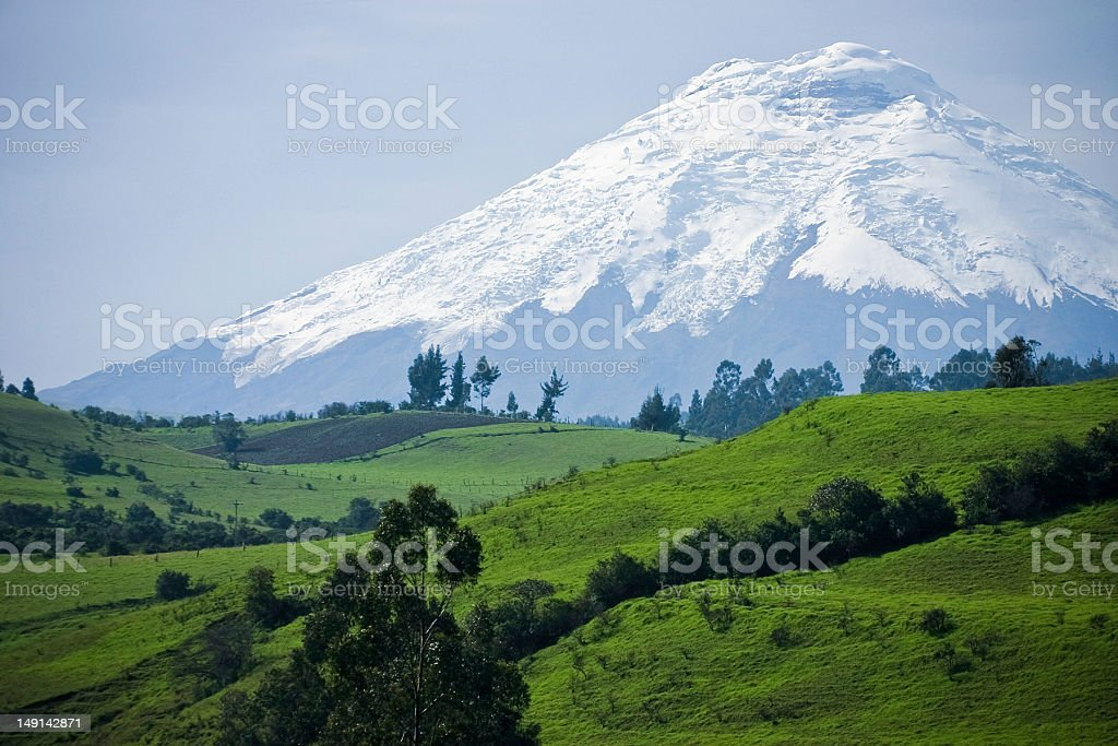 Landscape of field in front of Volcano Cotopaxi stock photo