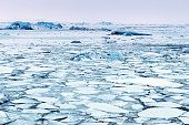 Landscape of ice:Frozen Jokulsarlon glacial lagoon in winter, Iceland