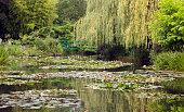 Landscape of Monet`s garden, Giverny, France