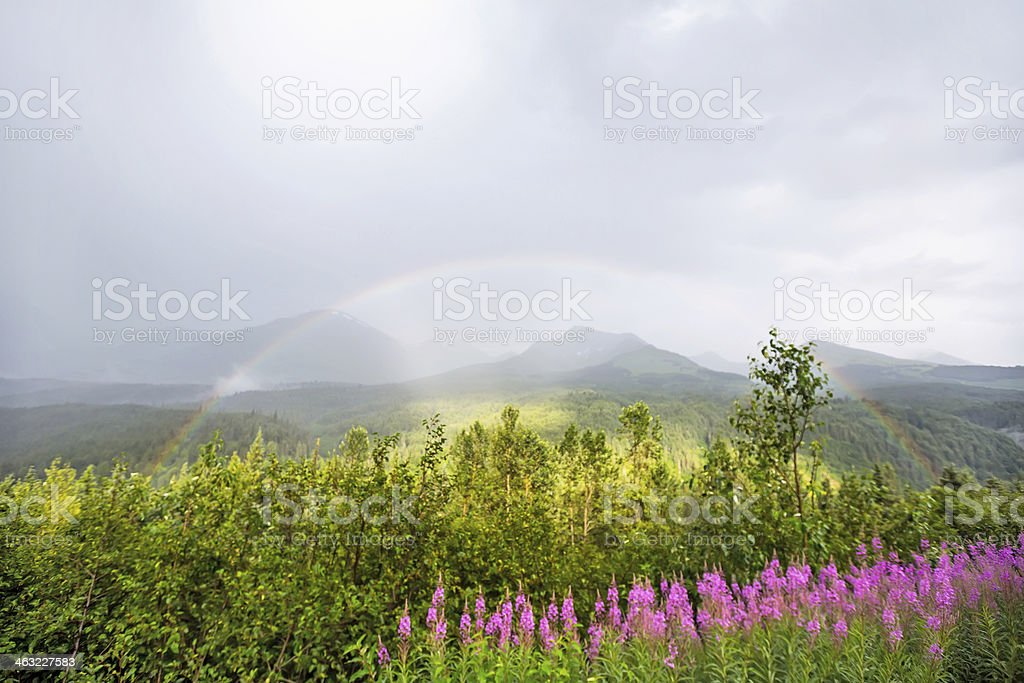 landscape of mountains and meadow in Alaska with a rainbow stock photo