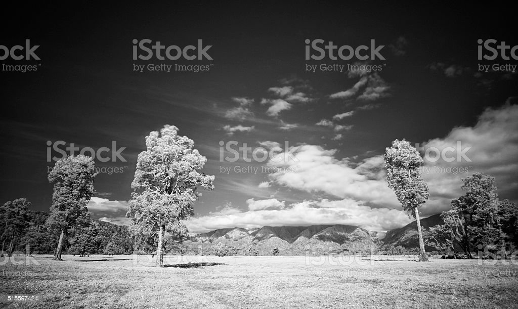 Landscape Of New Zealand's West Coast stock photo