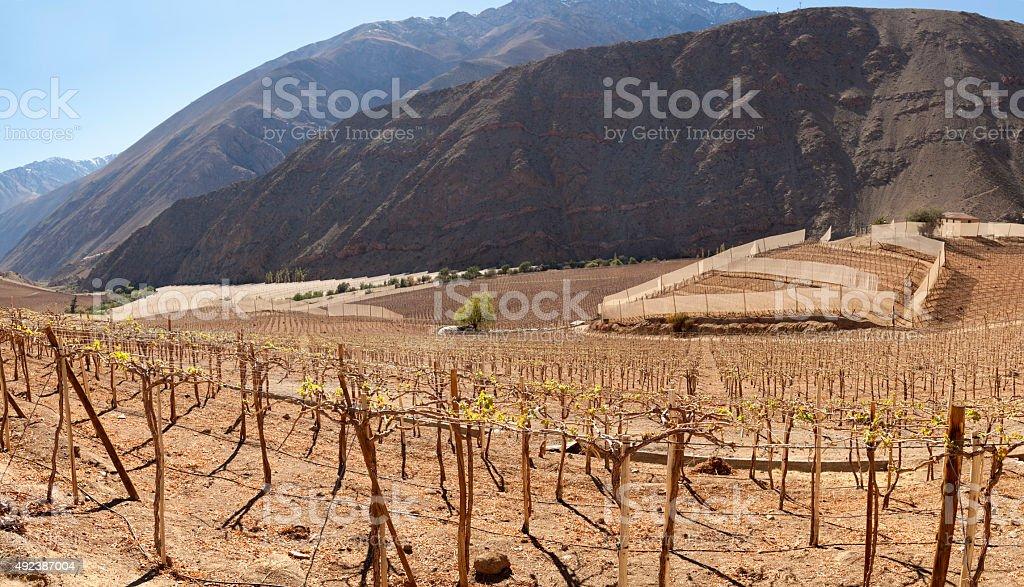 Landscape of North Chile stock photo