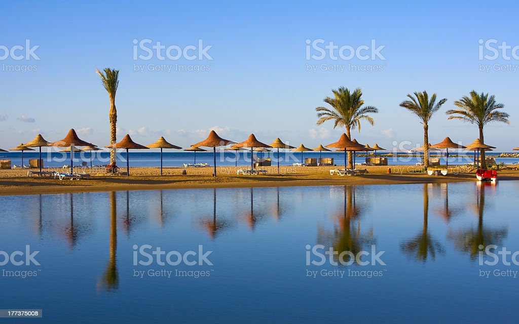 Landscape of palms and umbrellas along Egyptian shoreline stock photo