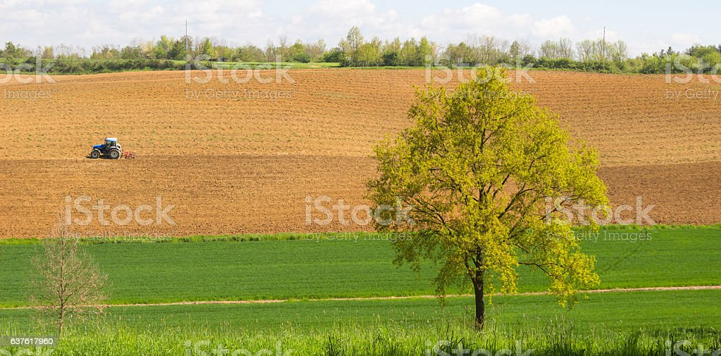 Landscape of plowed field under the evening sunlight background. stock photo
