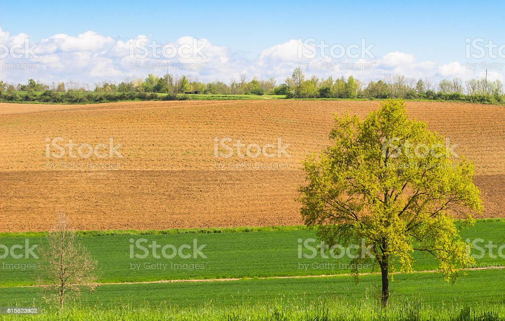Landscape of plowed field under the evening sunlight stock photo