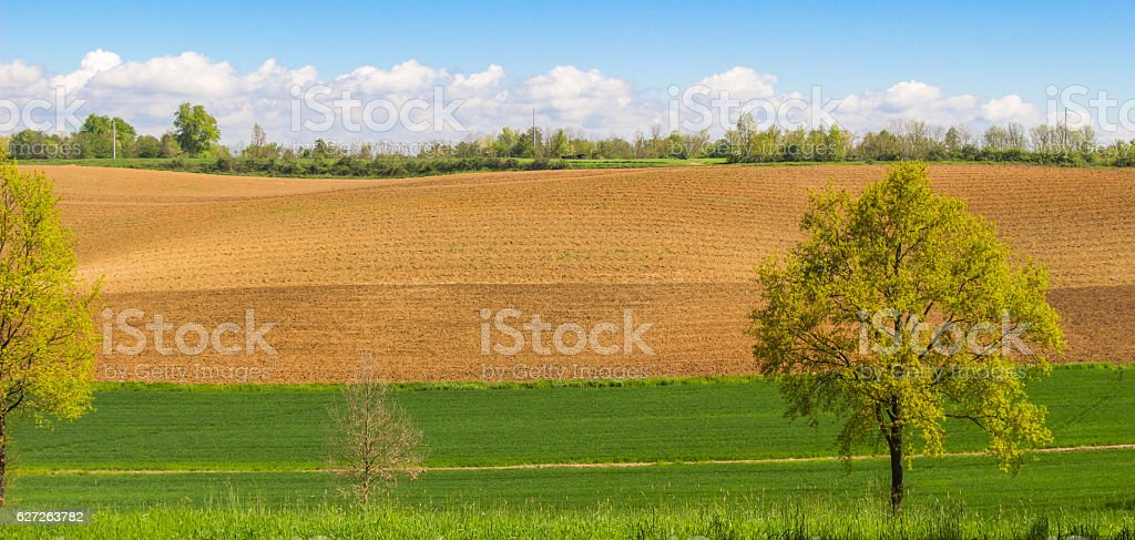 Landscape of plowed field with blue sky background. stock photo