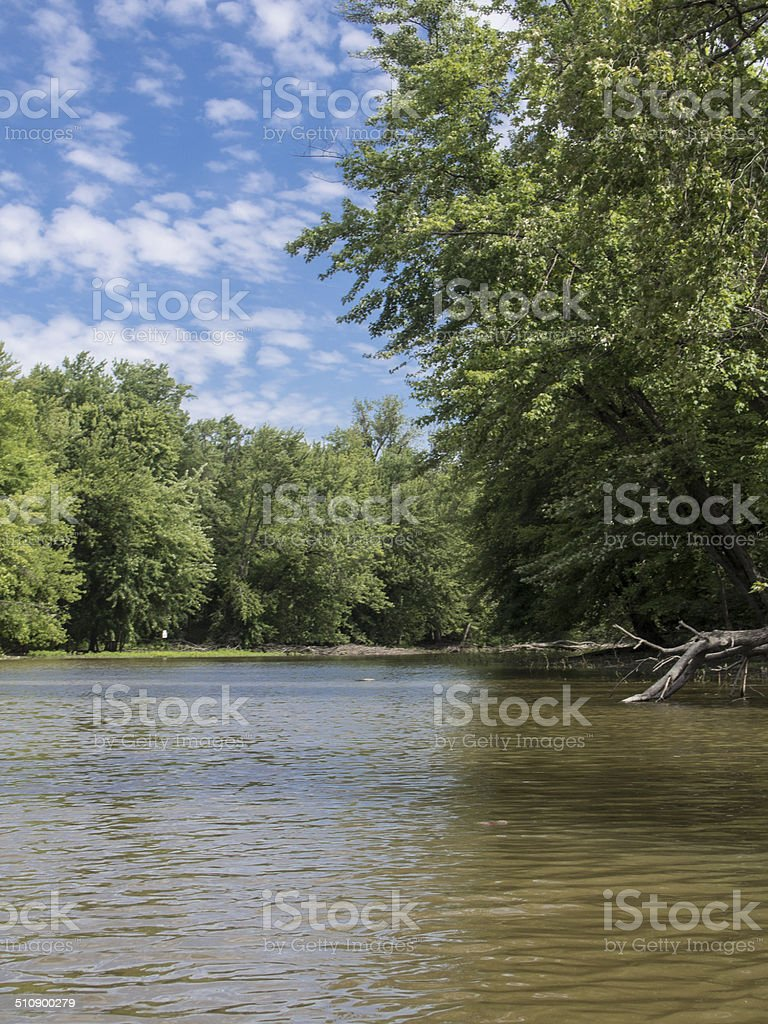 Landscape of river and trees stock photo