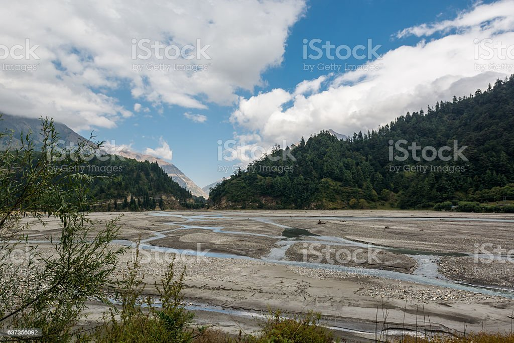 Landscape of river bed with individual streams. stock photo